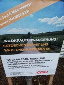 CDU Campaign Poster (2013)