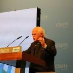 Interview with Handelsblatt Global on Gauweiler's Resignation 1