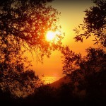 Interview mit web.de / Welt online zum Prozeß gegen die Goldene Morgenröte in Griechenland 1