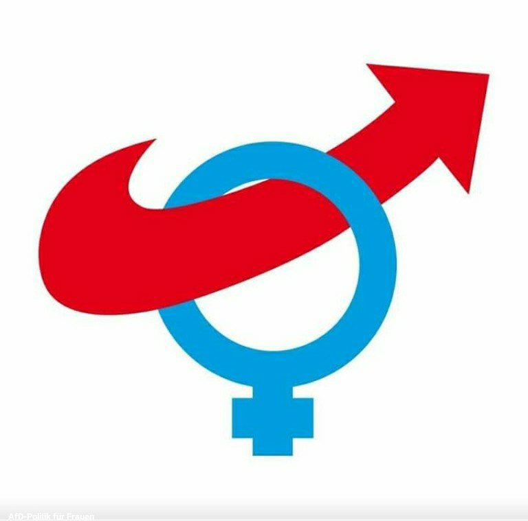 I looked up the AfD's women's organisation on Facebook. You will not believe what I found 2